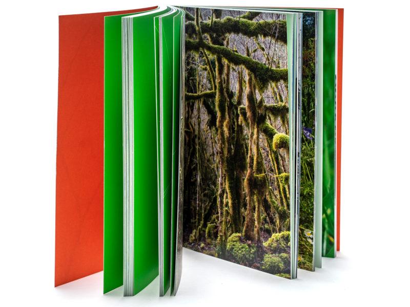Parution du livre S'il n'y avait qu'une image aux éditions LOCO
